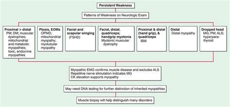 pattern dystrophy differential diagnosis quelques liens utiles