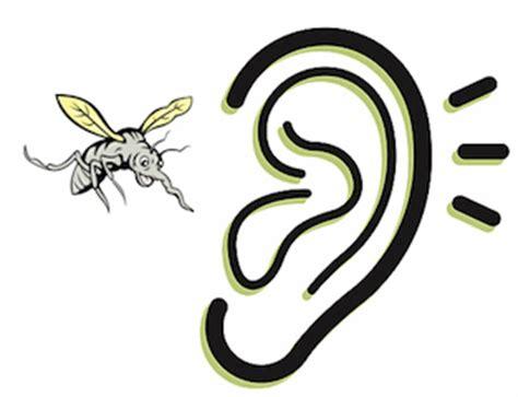 alasan nyamuk suka terbang di telinga kita anehdidunia