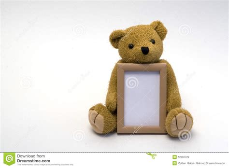 Frame Foto Teddy teddy with frame royalty free stock images image 12007729