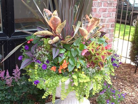 Summer Planter Ideas by Best 257 2017 Outdoor Planters Images On Other