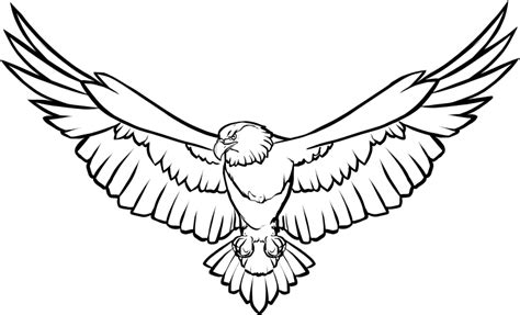 soaring eagle coloring page black and white soaring eagle clip art