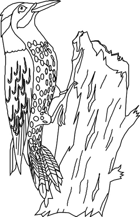 yellowhammer coloring page how to draw yellowhammer
