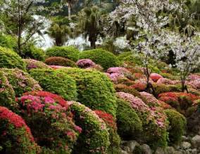 choosing landscaping plants a guide landscape garden