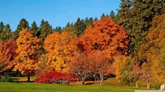fall landscaping download autumn landscape wallpaper 1920x1080 wallpoper