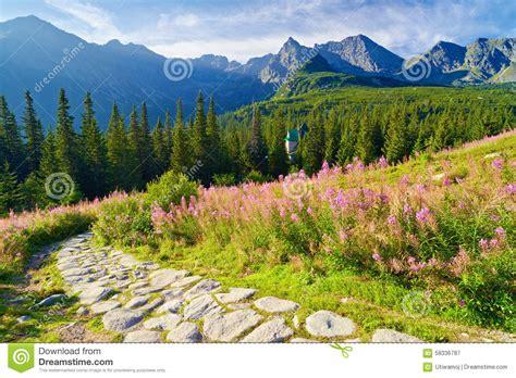 Mountain Chalet House Plans High Tatra Mountains Trail Landscape Nature Carpathians