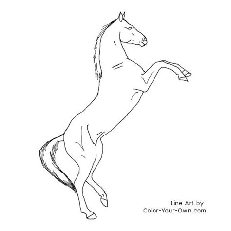 free horse rearing outline coloring pages