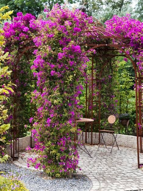 beautiful climbing plants 15 beautiful metal or wooden gazebo designs and garden