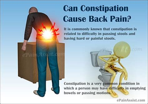 Blood In Stool And Lower Back by Can Constipation Cause Back