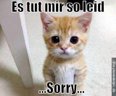 es tur mir leid es tut mir so leid sorry eine gro 223 deutschsprachige
