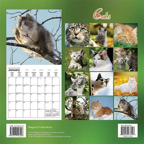 Cat Calendars Cats Calendar 2017 Mgcad02 Cats