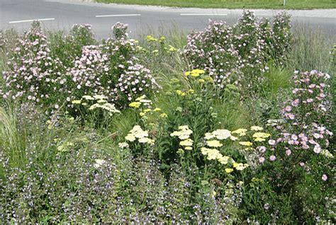 freiraum starnberg staudenpflanzung kunst im kreisel berg bei starnberg