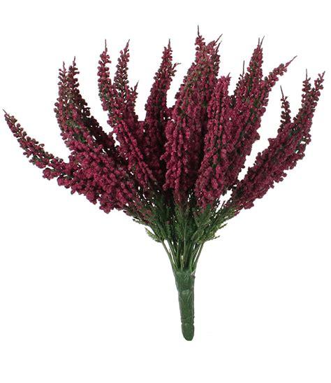 erika busch erika farbig 27 cm heidekraut calluna - Heidekraut Bunt