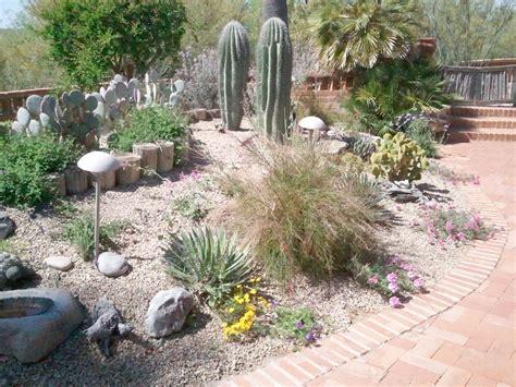 planting a backyard garden appealing desert landscaping idea for glory home exteriors