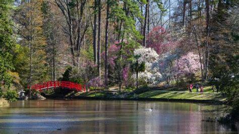 P Duke Gardens by Arvore Interessante Picture Of P Duke Gardens
