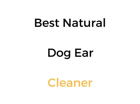 best ear cleaner best ear cleaner reviews buyer s guide