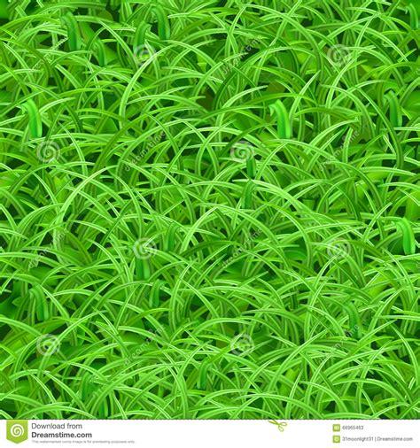 pattern grass vector seamless pattern of green grass stock vector image 66965463