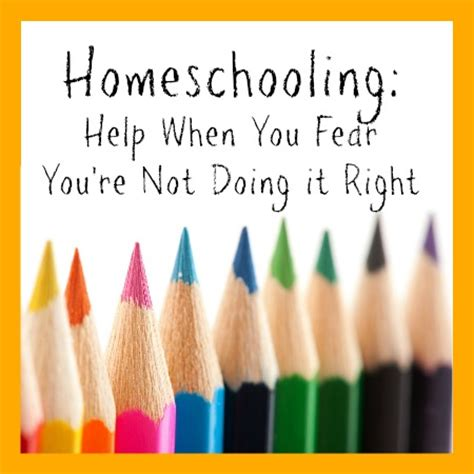 homeschooling do it afraid books homeschooling help when you fear you re not doing it