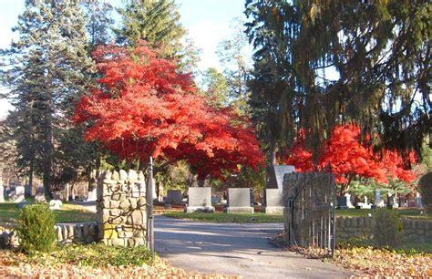 gene wilder headstone gilda radner found a gravefound a grave