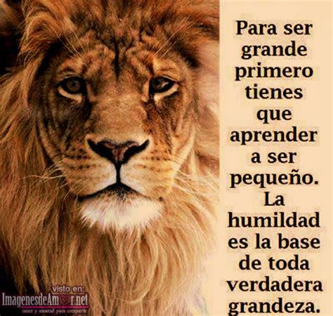 imagenes con leones cristianas imagenes de leones con frases imagui