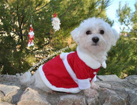 mimi y tara patrones de ropa para perros mimi y tara patrones de ropa para perros