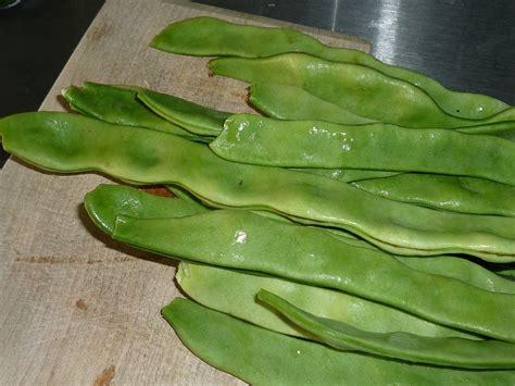 fagiolini come cucinarli insalatona piattona ovvero un insalata estiva vegana a