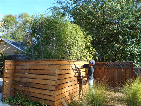 Tree Trimming Ideas Landscaping Ideas San Francisco Bay Area Tree Trimming
