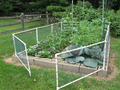 build  garden fenced vegetable garden cheap