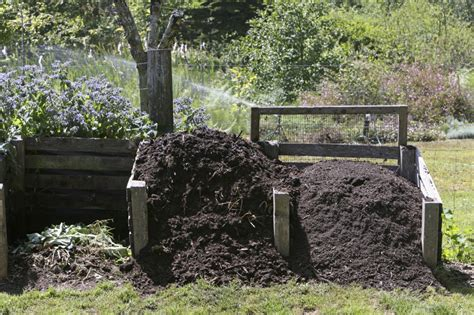 a complete guide to how to compost at home countryside