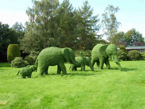 green animal garden topiary art