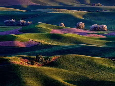 Randall Park by Palouse Country