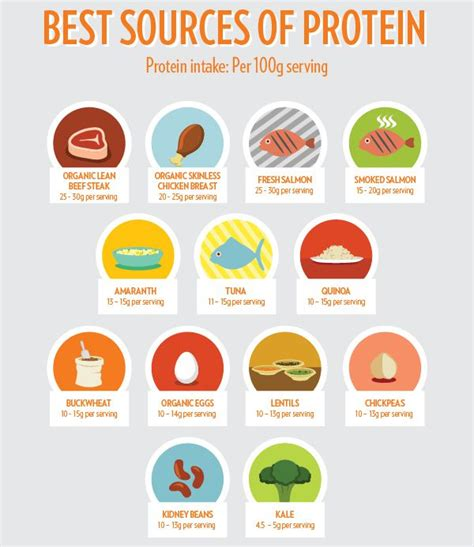 sources of protein why is protein so important in a healthy diet my health