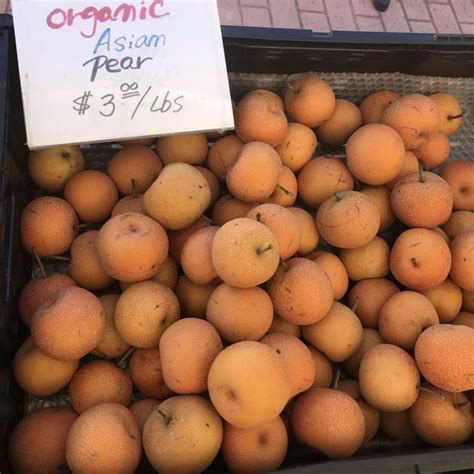 asian pears information recipes  facts