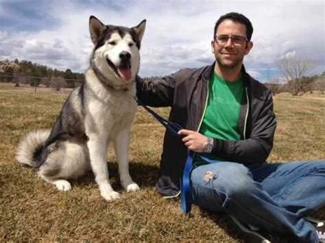 in house dog trainer in home dog training and board and training programs in denver