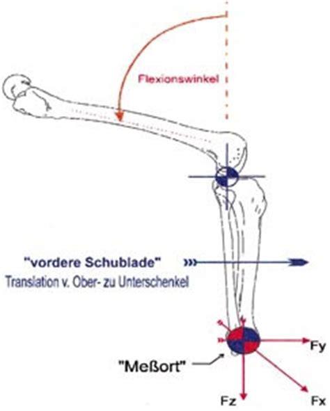 vordere schublade die stabilisierende wirkung tsm kniebandagen