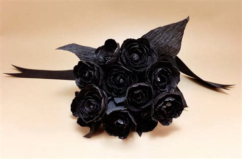 imagenes boinas negras imagenes de rosas negras rosa negra fotos de rosas