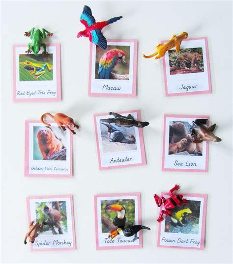 montessori printable books animals of south america for the montessori wall map