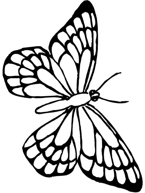 butterfly kids free coloring pages art coloring pages