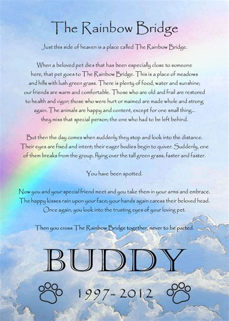 rainbow bridge poem rainbow bridge poem printable 5x7 breeds picture