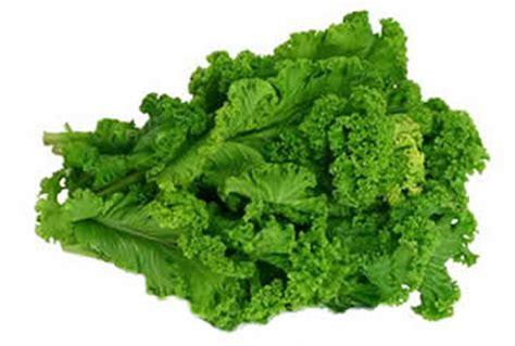 Mustard Greens   Got Greens?
