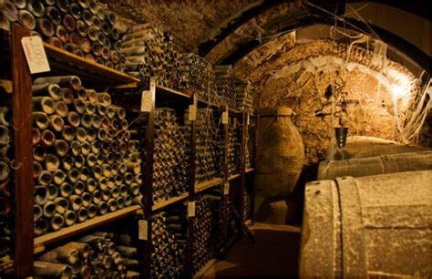 ancient wine cellar uncovered   middle east organic