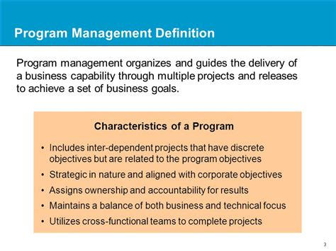 Meaning Of Mba Degree by Program Management Overview An Introduction Ppt