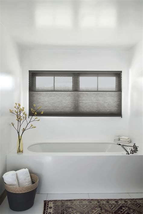 shades that let light in but keep privacy 52 best images about honeycomb shades on pinterest