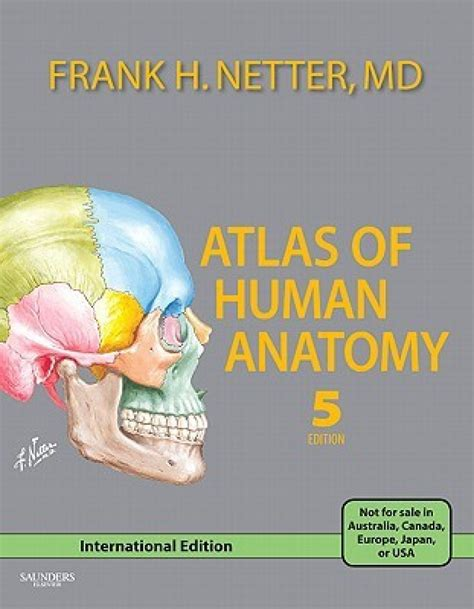 Atlas Of Human Anatomy Frank H Netter 6th Edition atlas of human anatomy 5th edition buy atlas of human anatomy 5th edition by frank h netter