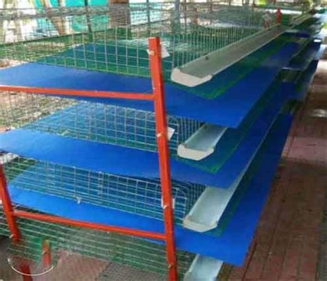 Kerala Home Design Books by High Tech Poultry Cages And Products For Sale Animal