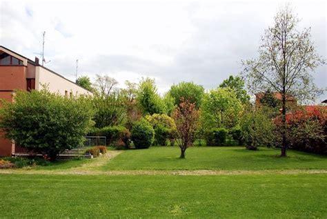 alberi giardino albero da giardino alberi latifolie alberi da giardino