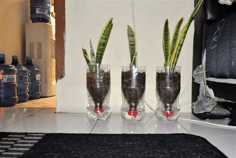 membuat pot tanaman  botol bekas hipmagro unswagati