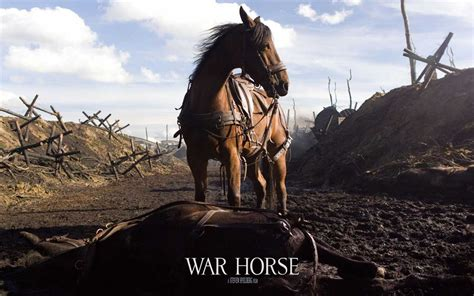 war horse how war horse succeeds