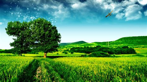 image gallery imagenes de paisajes hd 40 imagenes de paisajes hd im 225 genes taringa