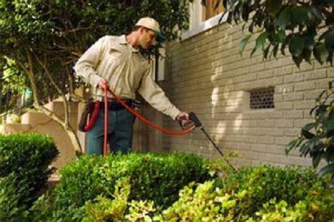 rid  yard  mosquitoes tips   work