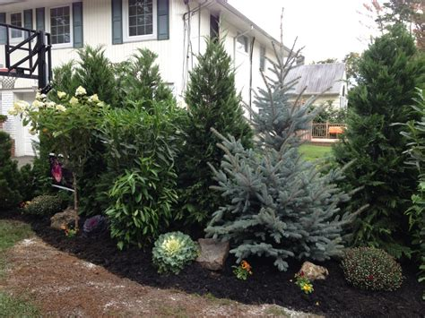 Evergreen Landscaping Ideas Evergreen Landscaping Ideas 28 Images Residential Landscape Ideas Residential Entrance